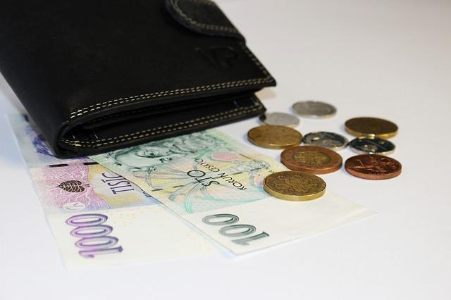 kožená peněženka a peníze